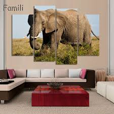elephant in the living room pink elephant in the room meaning terry brumfield elephant in the