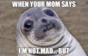Mad Mom Meme - awkward moment sealion meme imgflip