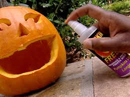 Halloween Pumpkin Decorating Ideas Pumpkin Carving Tips And Tools Hgtv