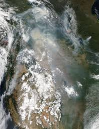 Bc Wildfire Management Facebook by Fires In Overberg Near De Hoop Nature Reserve In South Africa Nasa