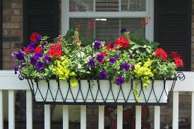Porch Rail Flower Boxes by Colorful Hanging Basket Bucket Planter Metal Material Flower Pot