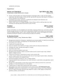 Director Of It Resume Director Resume 2 Doc Doc
