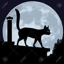 cat silhouette of a cat on the roof on a background of the
