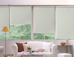 Roll Up Window Shades Home Depot by Window Blinds Window Blinds And Shades Harmony Roller Home Depot