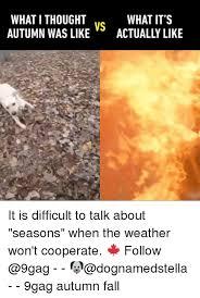 Autumn Memes - 25 best memes about autumn autumn memes