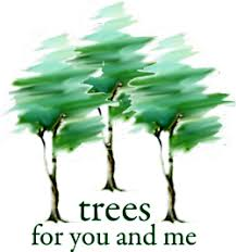 trees for you and me aazk