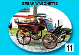 bianchi carrozze catalogo carrozze 2013 le carrozze di bianchi team carrozze