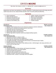 Travel Agent Resume     Breakupus Extraordinary Free Resume Samples Amp Writing Guides For All With Lovely Executive Bampw And Unique