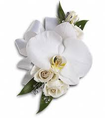 arlington florist white orchid and corsage in arlington tn arlington florist