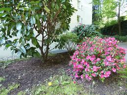 Eigentumswohnung Baden Baden 4 Zimmer Wohnung Zum Verkauf 76530 Baden Baden Mapio Net