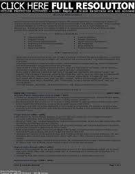 business owner cv sample starengineering