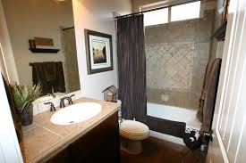Blue And Brown Bathroom Ideas Exciting Blue And Brown Bathroom Designs Ideas Best Ideas
