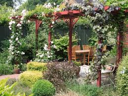 garden with pergola featured climbing plants climbing plants for