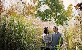Michigan Botanical Gardens Chris Fernwood Botanical Gardens Niles Mi
