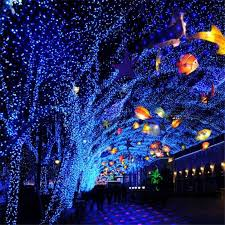 where to buy cheap christmas lights 2018 ip65 waterproof outdoor christmas lights red blue laser