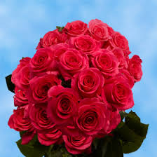 global roses bouquet of hot pink roses two dozens fresh flowers global