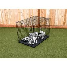 Dog Crate With Bathroom by Lucky Dog Crates U0026 Kennels Shop The Best Deals For Oct 2017