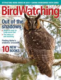 Backyard Birding Magazine Current Issue Birdwatching