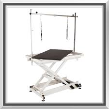 grooming table top material flying pig heavy duty electric lifting grooming table