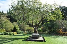 garden designer garden design and landscape designer in beaconsfield jilayne