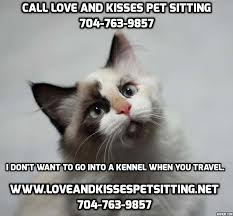 Cat Sitting Meme - should i feed my cat tuna fish love and kisses pet sitting