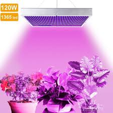 led grow lights 5 best 120 watt led grow lights review for your plants