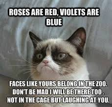 Roses Are Red Violets Are Blue Meme - roses are red violets are blue humor hub