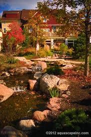 Aquascape Designs Inc 53 Best Aquascape By Blue Creek Images On Pinterest Ponds