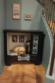 Dog Bunk Beds Furniture by 25 Best Dog Bedroom Ideas On Pinterest Dog Rooms Puppy Room
