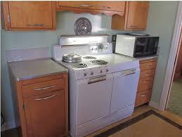 1950s Kitchen Furniture Vintage Kitchen Cabinet Swing Out Shelf Storage Contraption What