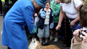 Queen Elizabeth Ii Corgis by Traurige Queen Elizabeth Ii Ihr Hund Holly Ist Gestorben