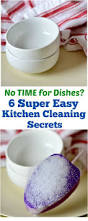 7 Quick And Easy Kitchen Cleaning Ideas That Really Work 225 Best Cleaning Hacks For Your Home Images On Pinterest