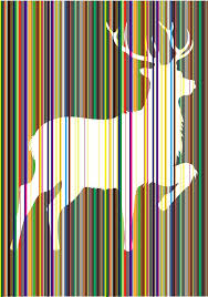 pul smith 40 best paul smith images on paul smith carpet and carpets