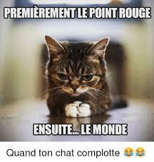Chat Meme - premierementle pointrouge ensuite le monde quand ton chat