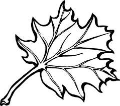 leaf coloring page chuckbutt com