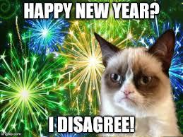 Happy New Year Cat Meme - new year cat not really imgflip