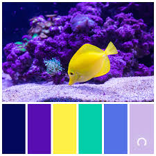 yellow color combination color inspiration yellow tang astelle s colors
