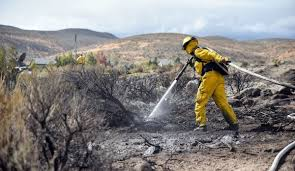 Wild Fire Danger by Officials In Nevada See Dry Cheatgrass As A Wildfire Danger