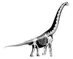 smithsonian dinosaurs backyard reconstructing extinct