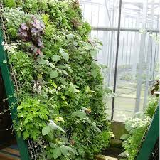 small space vegetable garden ideas the garden inspirations