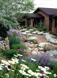 California Landscape Lighting Southern California Landscape Concepts Low Upkeep Landscapes