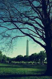 Washington travel channel images Best 25 monument washington ideas lincoln memorial jpg
