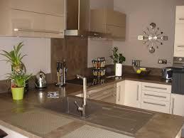 couleur mur cuisine bois cuisine bois clair charmant cuisine magnolia couleur mur mur cuisine