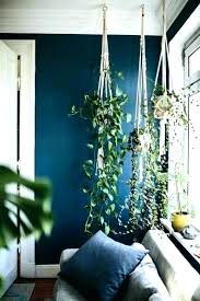 home decor with plants living room ideas with plants view in gallery living room indoor