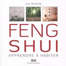 appartement feng shui amazon fr feng shui apprendre à habiter luc antoine livres