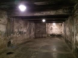 les chambres à gaz source d inspiration auschwitz chambre a gaz ravizh com