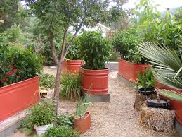 Outdoor Planter Ideas by Planting Ideas For Large Outdoor Planters U2014 Home Designing
