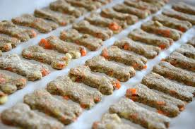homemade apple and carrot dog treat recipe the rodimels family blog