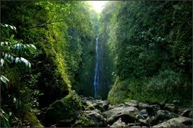 Maui Photographers Maui Art Photographers Directory Hawaii Fine Art Photography