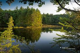 Beautiful Pictures Of Spring by Our Springs Poland Spring Brand Spring Water